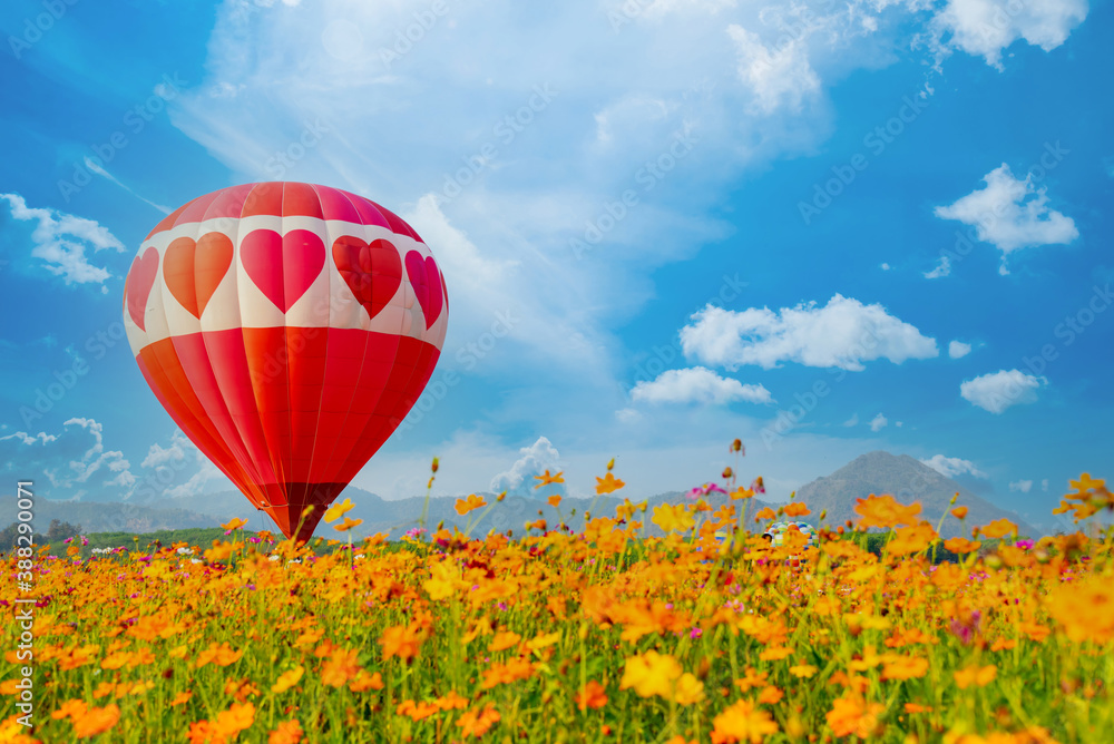 Fototapeta Colorful hot air balloon flying at the natural park and garden. Outdoor activity and travel in Thailand.