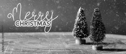 Merry Christmas holiday background with bottle brush trees under winter snow in nostalgic black and white.