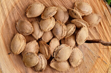 Lots Of Apricot Seeds On A Wooden Background.  Large Seeds Of Fruit Plants.