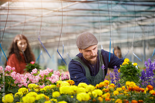 Papel de parede Young team of gardeners working in horticulture