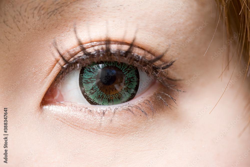 Fototapeta 女性の目
