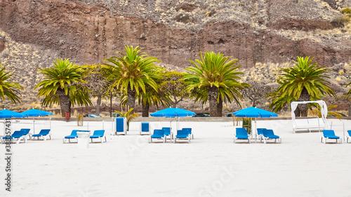 Fototapeta Empty beach with sun loungers and umbrellas, Tenerife, Spain.