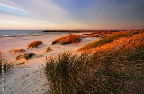 Fototapeta Morze Bałtyckie ,zachód słońca,wydma,trawa,plaża,biały piasek,Kołobrzeg,Polska. obraz