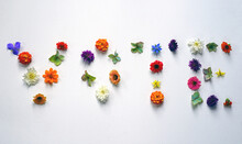 Letters For VOTE Made Out Of Colorful Flowers