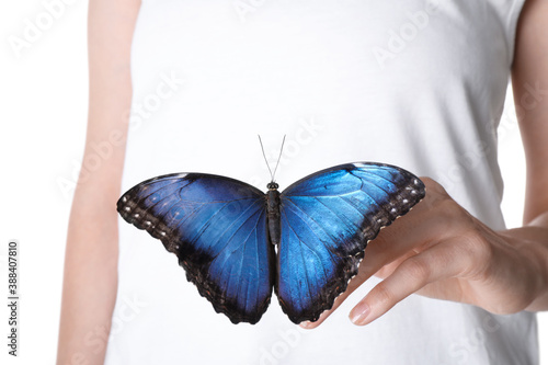 Woman holding beautiful common morpho butterfly on white background, closeup Wallpaper Mural
