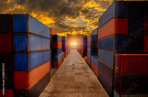 Fotomural Dock worker logistics under checking containers cargo shipping warehouse , loading for business logistic import and export freight transportation with sun sky background
