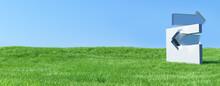 草原に立つ異なる方向を指した矢印のオブジェ ビジネスコンセプトの3Dレンダリンググラフィックス