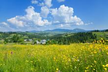 Summer Mountain Landscape, Bri...