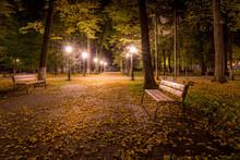 Night Autumn Park With Fallen ...