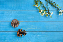 Two Dry Pine Cones And Artificial Branches With White Blooming Flowers Against Blue Wooden Background. Close Up, Copy Space