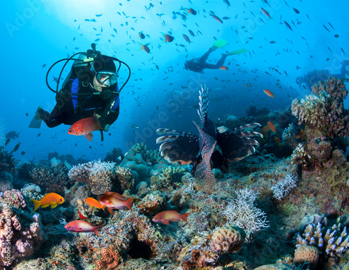 Fotografiet Group of divers exlpore colorful coral reef.