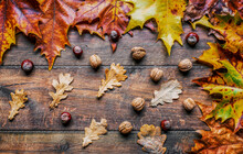 Wooden Background With Autumn ...