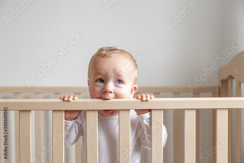 Obraz Blond cute little baby biting wooden bed headboard - fototapety do salonu