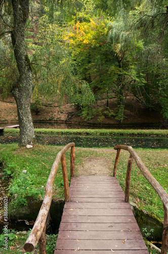 Fotomural Wood bridge in park with ponds