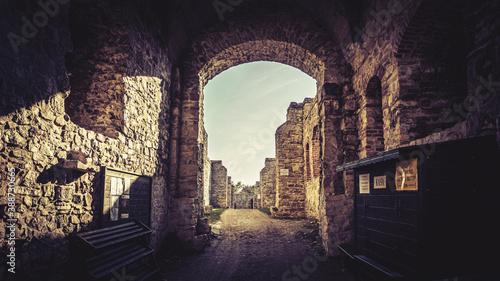 Zamek Tenczyn – ruiny zamku leżącego na Jurze Krakowsko-Częstochowskiej Fototapeta