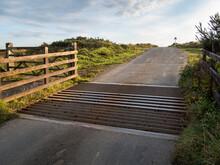 Cattle Grid In Devon, England.