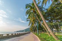 Front Beach Park, Vung Tau Cit...