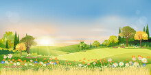 Spring Landscape Morning In Countryside With Sun Rays Shining Through Green Meadow On Hill With Orange And Blue Sky,Vector Cartoon Natural Background On Summer Or Spring With Grass Field And Flower