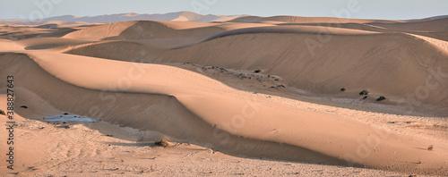 Canvastavla Amazing landscape in Namibia, Africa