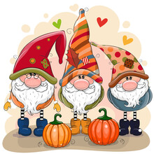 Cute Cartoon Gnomes With Two Pumpkins