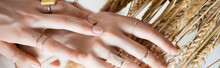 Cropped View Of Female Hands W...