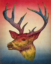 Deer Vintage Colorful Print Design