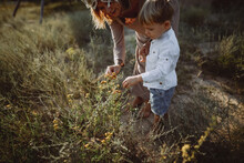 Mom And Son Pick Flowers
