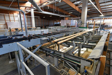 Planks Being Processed In Lumberyard