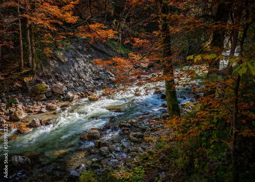 Cuadros en Lienzo Breitachklamm im sonnigen Herbst
