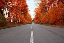 Empty Asphalt Road Through Aut...