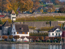 Lakefront Hoses And The Vineyards Of The Capuchin's Monastery In The Altstadt Of Rapperswil, St. Gallen, Switzerland