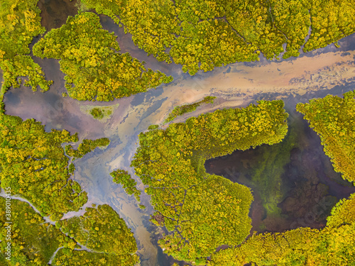 Fototapeta Aerial view of colorful pond in the marshlands during a summer day