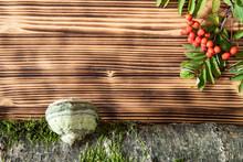 Hintergrund Oder Untergrund Aus Braunem Holz Mit Früchten Und Laub Vom Herbst