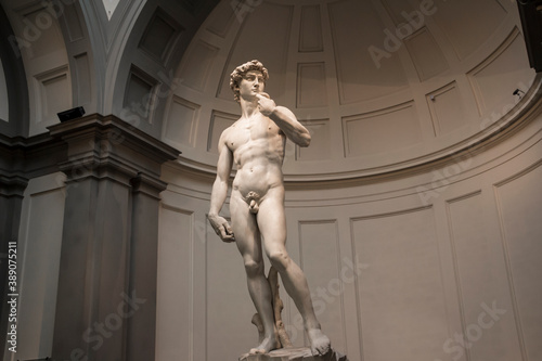 Marble sculpture of Michelangelo's David in the Gallery of the Academy of Florence Fototapet