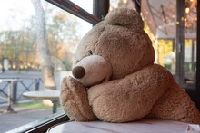 Portrait Of Teddy Bear Sitting At The Restaurant Terrace Behind The Window