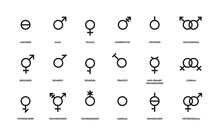 Gender Line Icons. Sexual Orie...