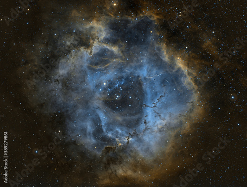 Nebulosa Rosetta Canvas Print