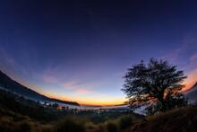 Blazing Horizon In The Morning With A Tree  In Kintamani, Bali , Indonesia
