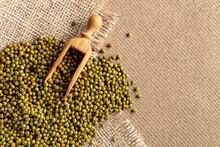 Raw Uncooked Green Lentils (lens Culinaris).