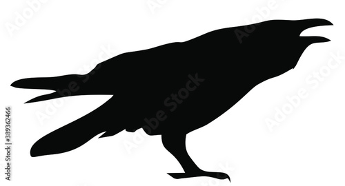 Vector icon of a crow Fototapeta