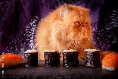 Un gato Despistado Slika na platnu