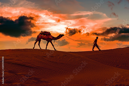 Cameleers, camel Drivers at sunset Canvas