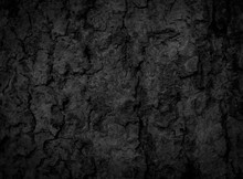 Black Old Bark Background The...