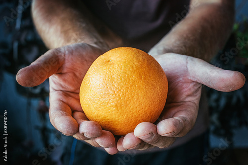 a farmer holding an orange with dirty hands Wallpaper Mural
