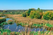 The Narrow River Flows Through The Dense Forest