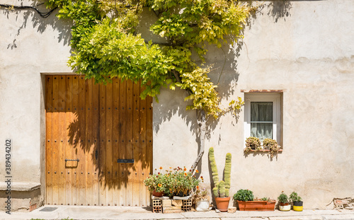 Fotografie, Obraz a closed door of a cozy house decorated with plants and flowers