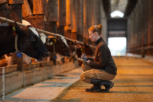 Side view portrait of young woman inspecting livestock and writing on clipboard Fototapeta
