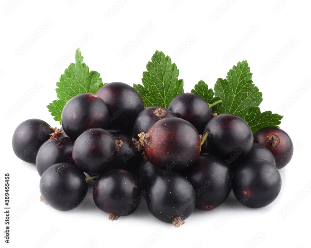 Fototapeta Currant berries isolated on white background