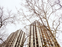 Two Unfinished Highrises Among Bare Trees Against The Backdrop Of A Cloudy Sky. Bottom View
