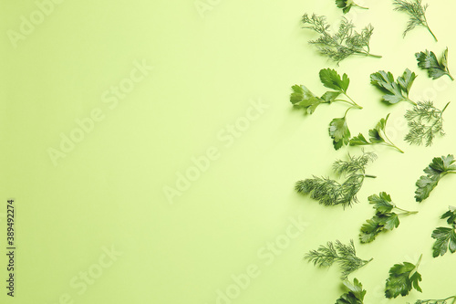 Fototapeta Fresh parsley and dill on color background obraz
